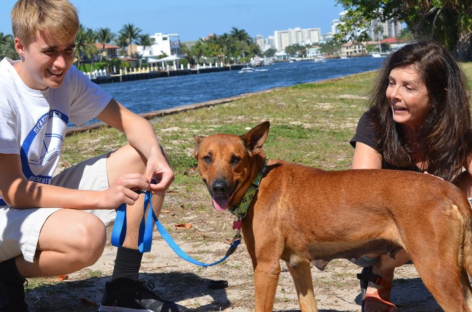 Everglades Angels Dog Rescue Inc